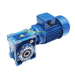 1487658020double-worm-gear-speed-reducer-with-electric-motor-72654485_300x300.jpg